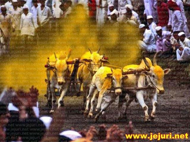 bullcart race